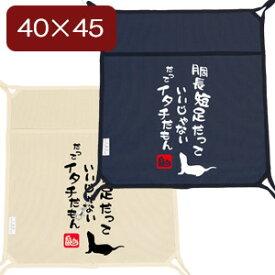 【受注生産】LIP3028 デザインプリントハンモック(キャンバス) 40x45 #1 オールシーズン フェレット ハンモック 寝袋 キャンバス コットン 丈夫 厚手 国産帆布