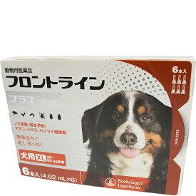 フロントライン プラス ドッグ XL 40〜60kg未満 6本入(4.02ml×6) [犬用]