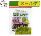 【メール便】エイムクリエイツグリーンラボ猫草スナックまぐろ味40g