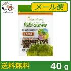 【メール便】エイムクリエイツグリーンラボ猫草スナックかつお節味40g