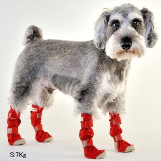 狗靴子 4 件套