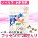 Placenta 1set