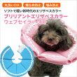 【新商品】ブリリアントエリザベスカラーウェブセイラー3号【犬猫用介護用品ケア】