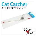 Catcacther 1