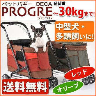 1 炸彈新寵物馬車進步 DECA DECA prog