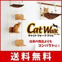 Catwalkslim 1