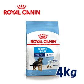 ロイヤルカナン(ROYALCANIN)ドッグフード 大型犬の子犬用 マキシパピー 生後15ヶ月齢まで 4kg