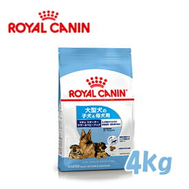 ロイヤルカナン(ROYALCANIN)ドッグフード マキシスターター マザー&ベビードッグ 大型犬専用フード 離乳〜生後2カ月齢の子犬用 4kg