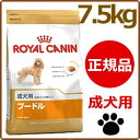 ロイヤルカナン 犬 BHN プードル 成犬用 7.5kg ≪正規品≫ 対応 生後10ヵ月齢以上 アダルト 犬 フード ドライ プレミ…