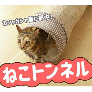 カシャカシャ キャットトンネル 猫 トンネル ネコ ねこ おもちゃ 【D】 楽天【2019aw】