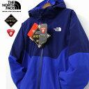 THE NORTH FACE ザ ノースフェイス Apex Flex GTX Thermal Jacket マウンテンダウンジャケット メンズ 【GORE-TEX×PrimaLoft】 ゴアテックス