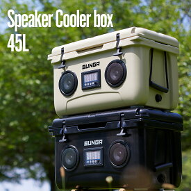【8/10頃入荷予定】 クーラーボックス 45L Bluetooth スピーカー ブラック ベージュ 大型 クーラーバッグ アウトドア キャンプ 釣り バーベキュー