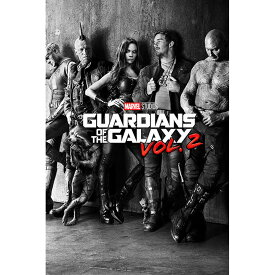 GUARDIANS OF THE GALAXY ガーディアンズ・オブ・ギャラクシー - Black & White Teaser / ポスター 【公式 / オフィシャル】
