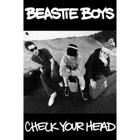 BEASTIE BOYS ビースティボーイズ (映画『Beastie Boys Story』公開 ) - Check Your Head / ポスター 【公式 / オフィシャル】