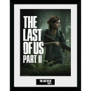 THE LAST OF US ザ・ラスト・オブ・アス (PART2発売記念 ) - PART II Key Art / インテリア額 【公式 / オフィシャル】