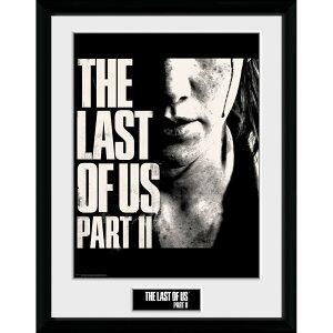 THE LAST OF US ザ・ラスト・オブ・アス (PART2発売記念 ) - Face / インテリア額 【公式 / オフィシャル】