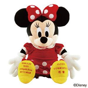 【送料無料】ウェイトドール ミニーマウス 足裏刺繍込み(結婚式 ギフト 出産祝い お祝い 誕生 両親へのプレゼント ウェディング ウェイトドール ディズニー)