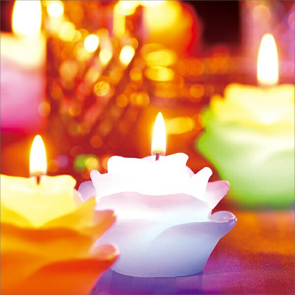 【マジックキャンドル】【60%OFF!】Magic Candle(ローズ マジックキャンドル)〜キャンドルリレーに最適〜(キャンドルリレー用 可愛いお持ち帰り箱付き 席札 種火 キャンドルサービス クリスマス プレゼント)