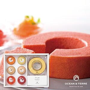 Premiumフルーツゼリー&北海道ミルクバウムクーヘン2020年冬ギフト菓子 (ゼリー 焼き菓子 スイーツギフト 春ギフト 菓子 お祝い2020スイーツ おうちスイーツ_ドリンク)