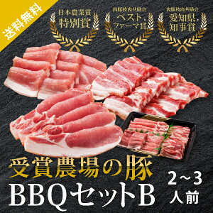 【送料無料】あいぽーく BBQセットB 2〜3人前(560g)(巣ごもり 常備品 おうち時間 ギフト 食品ギフト バーベキュー BBQ アウトドア 豚肉 焼肉 焼き肉)