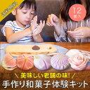 【送料無料】練り切りキット(12個入り)(和菓子 生菓子 練り切り 煉り切り ねりきり お菓子作り 手作り 和スイーツ 送…
