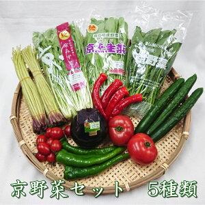【京野菜セット5種類】京都中央卸売市場より目利きプロが厳選直送。旬の京野菜を食卓へ 京野菜 新鮮 京都 父の日