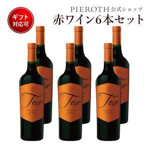 トソ マルベック 2019 750ml 6本セット アルゼンチン メンドーサ マイプ 赤 ワイン 辛口 | ワインセット 赤ワイン プレゼント ギフト パーティ酒 酒 wine 誕生日 入学祝い・入学就職祝い 端午の節