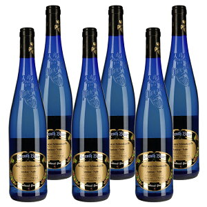 ピーロート ブルー アウスレーゼ 2018 6本セット ドイツ 白 ワイン 甘口 | ワインセット 白ワイン プレゼント ラッピング ギフト 人気 おすすめ フルーティー ぶどう 美味しい 海外 高級 wine お