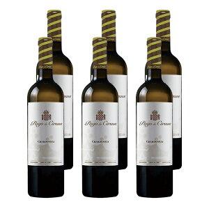 パゴ・デ・サルサス シャルドネ (2018) 6本セット スペイン 白 ワイン 辛口 | ワイン プレゼント ギフト ラッピング おすすめ 人気 wine お酒 美味しい ぶどう ブドウ 高級 海外 酒 おしゃれ パー