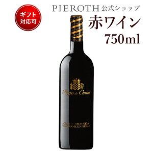 パゴ・デ・サルサス オー11 セレクシオン (2013) 1本 スペイン ナヴァーラ 赤 ワイン 辛口 | ワイン プレゼント ギフト ラッピング おすすめ 人気 wine お酒 美味しい ぶどう ブドウ 高級 海外 酒