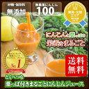 梨ジュース1パック増量中 葉っぱ付きまるごと冷凍にんじんジュース 1箱 100cc×30p 冷凍ジュース 無農薬人参 ホールフ…