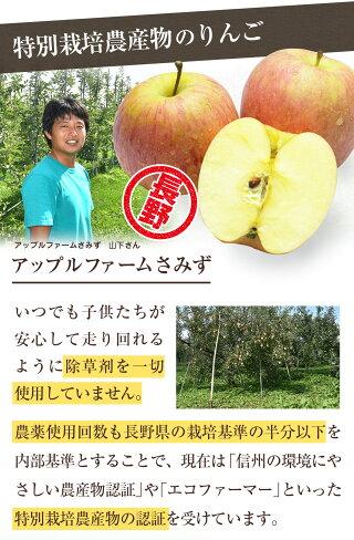 特別栽培農産物のりんごアップルファームさみず