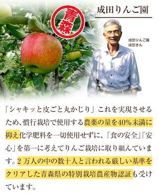 特別栽培農産物のりんご成田りんご園