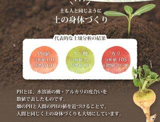 土も人と同じように土の身体づくりその1