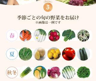 季節ごとの旬の野菜をお届け