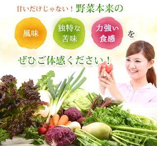 野菜本来の風味・独特な苦味・力強い食感