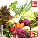 箱根南麓の伊豆のメディカル野菜セット
