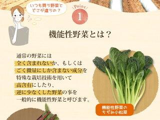 機能性野菜とはその1