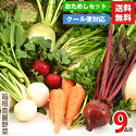 伊豆の高原のメディカル野菜お試しセット