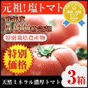 \食べ納めSALE!/【わけ有り】丸かじり塩トマト3箱【熊本県産】【リコピン】