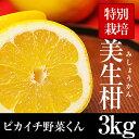 【ワケ有り】美生柑3kg【特別栽培農産物】【愛媛県産】【人参ジュース】