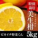 【ワケ有り】美生柑5kg【特別栽培農産物】【愛媛県産】【人参ジュース】