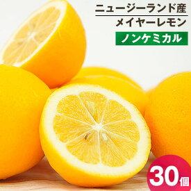メイヤーレモン 30個 ノンケミカル 防カビ剤不使用 ニュージーランド産 海外産 人参ジュース用 慣行栽培