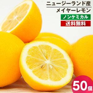 メイヤーレモン 50個 ノンケミカル 送料無料 防カビ剤不使用 ニュージーランド産 海外産 人参ジュース用 慣行栽培 業務用
