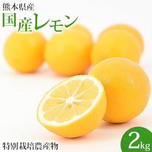 \一度食べたら忘れられない!/熊本県産 スキッとレモン 2Kg 【特別栽培農法】【国産レモン】