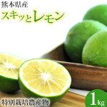 熊本県産スキッとレモン1kg(グリーン)