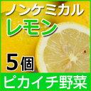 ノンケミカルレモン 5個【慣行栽培】【にんじんジュース】