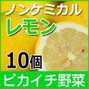 ノンケミカルレモン 10個【慣行栽培】【にんじんジュース】