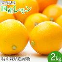 特別栽培農産物 佐賀県産 国産レモン2kg マイヤーレモン 人参ジュース 訳あり