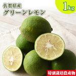 佐賀県産特別栽培レモン1kg